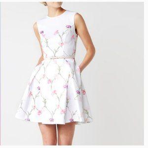 Ted Baker Ahlanna Sketchbook Dress size 2 nwot